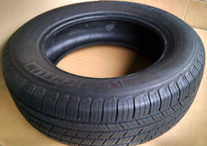 Michelin Radial Tire 195/65R15