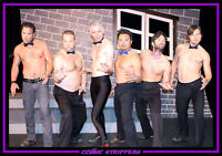 The Comic Strippers: a male stripper parody & improv comedy show