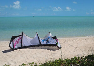 2010 North Evo 10m kite with Bag, Bar and Lines