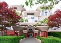 KITSILANO GREAT LOCATION – 2BR 2BA FOR RENT OCT 1ST $1640