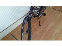Raliegh bike 18 speed