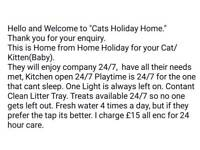 CATS HOLIDAY HOME