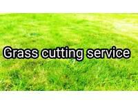 Grass cutting, painting, power washing