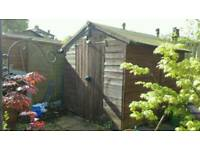 Shed good condition 6ft bye 8ft