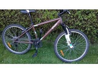 "Kids 24"" mountain bike"
