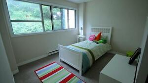 Large 1 Bedroom Apartment in Kitchener - ALL UTILITIES INCL.! Kitchener / Waterloo Kitchener Area image 7