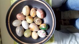 Many beautiful eggs