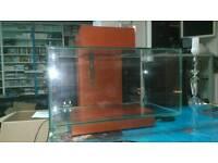 Fluval Edge limited edition Colour Excellent Condition and Very Clean 23 Litres Excellent Condition