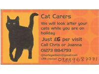 Cat Carers - let us look after your cat in their own home while you are away.