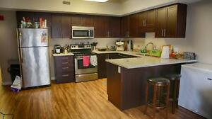 Walking distance to Waterloo! Internet Included! CALL TODAY! Kitchener / Waterloo Kitchener Area image 2