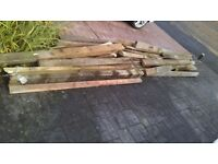 free wood for bonfire or wood burner