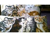 Brand new handmade rectangle cat cushions x2