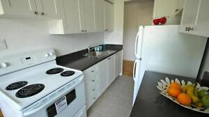 Vic Park & Eglinton Bachelor for Rent! Minutes from Eglinton Sq!