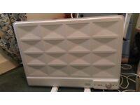 Oil filled electric freestanding panel radiator