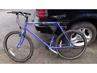 Raleigh mirage adult mountain bike
