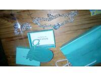Silver Tiffany style set