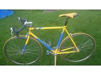 raleigh reynolds 853 Road bike racer