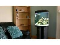 Fish tank for marine fish tl-450 with stand and everything you need to get started, plus extras.