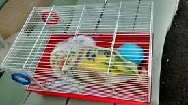 Hamster Cages x 2 & accessories.