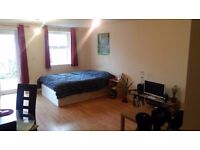 Urgent! Large Refurbished Studio Flat with garden £196 pw Furnished(call for details) or Unfurnished