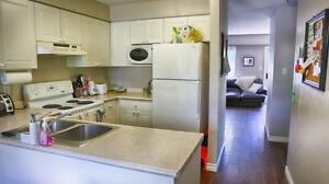 UWO Student Townhomes for rent in London near St. George/Mill!