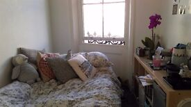 One double room available in lovely two bedroom flat.