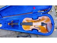 Full size Stentor Violin with rosewood pegs, shoulder rest, case and stand