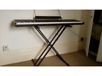 Alesis digital piano (88 semi-weighted keys)