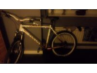 White Focus Black Forest 29R cross country bicycle