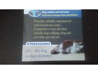 Abi's dog walking and pet services