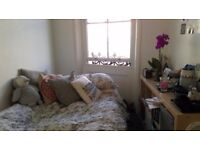 Double room in lovely two bedroom flat (sharing flat with 1 other person)