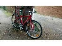 Bike register clear trek hybrid