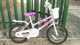 Child's bike (aged 2-5)