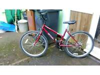 "Ladies 16"" Mountain bike"