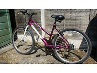 Breeze Equip MTB Child's Mountain Bike, Purple