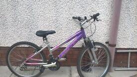 Childrens Bike - 22inch Wheels