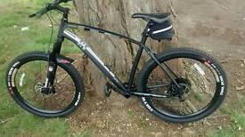 Incline Delta Hardtail XL bike & extras