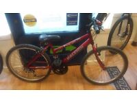 "Raleigh Max 24"" wheel bike grip shift 12 speed gears bicycle bike working order"