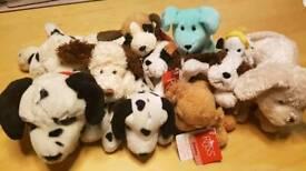 10 soft toy dog teddies teddy plush lot