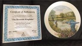 Royal Daulton Decorative Plate Excellent condition.