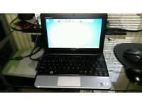 """Dell Inspiron Mini 10.1"""" Notebook"""