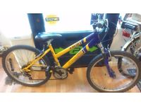 "Freespirit Xeria 24"" wheel bike suit 9yr old rider"