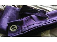 Purple curtains eyelet width 167cm drop 137cm