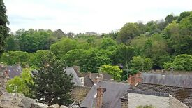 1 bed flat to rent in Richmond, beautiful views! Available now