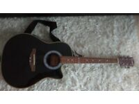 Electro, Acoustic Westfield Guitar