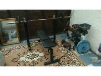 Marcy bench plus weights