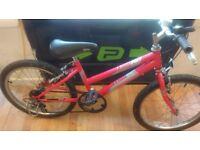 "Raleigh Kobo Girls 20"" wheel bike working order 5 speed top thumb shifter gear cycle"
