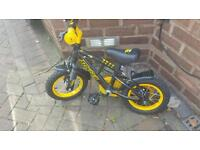 Boys Stinger Bike