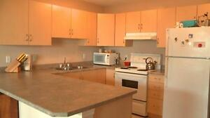 3 Bedroom – Fireplace, Pet Friendly, Basement. 1 Month FREE Edmonton Edmonton Area image 2