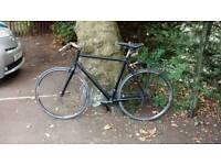 Bike reg clear racing hybrid